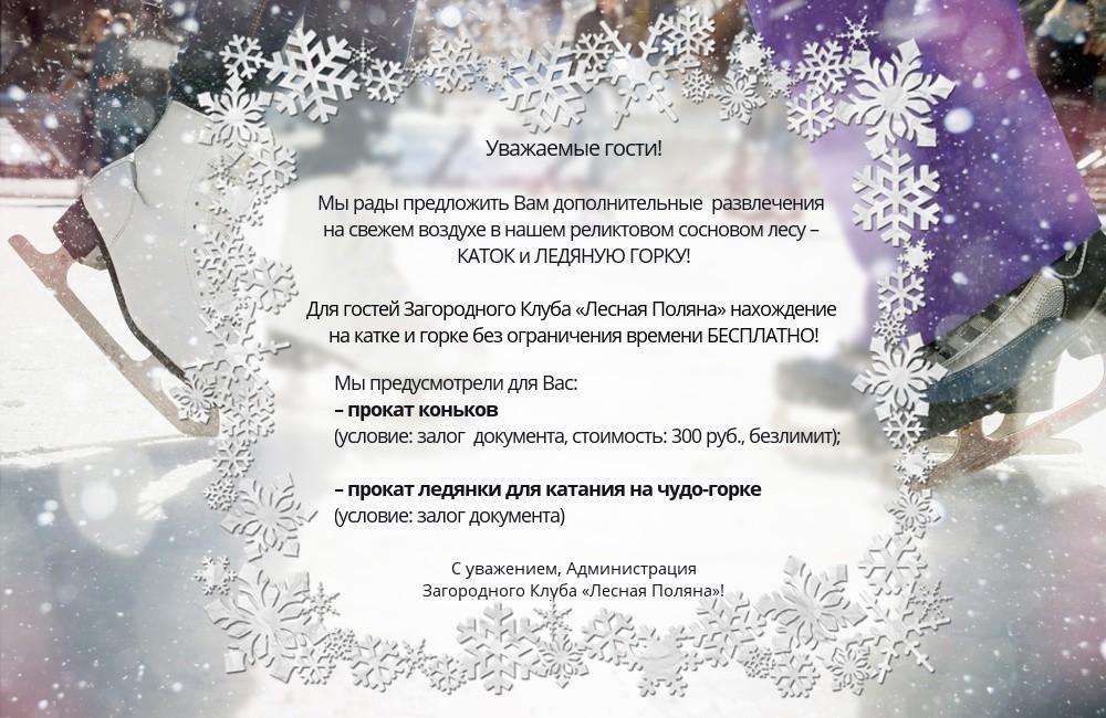 Ледяной каток в Загородном Отеле «Лесная Поляна»
