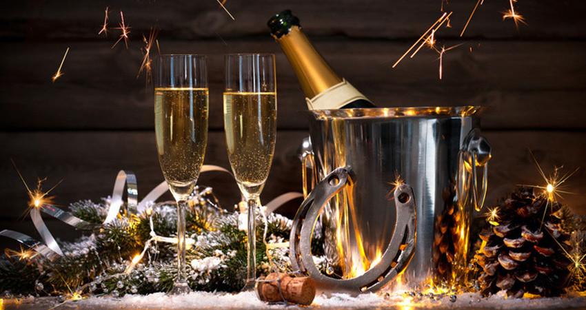 Новогодняя ночь в загородном клубе Лесная поляна !